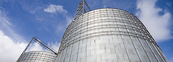 Point Level Measurement in Granular Storage Silos